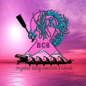 DRACO BCS Logo Sm